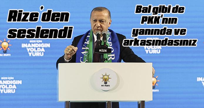 Erdoğan'dan ABD'ye tepki: Bal gibi de PKK'nın yanında ve arkasındasınız