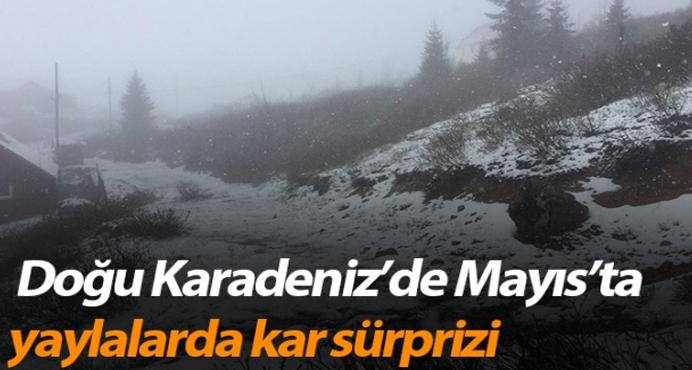 Karadeniz yaylalarında, mayısta kar sürprizi