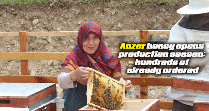 Anzer honey opens production season; hundreds of already ordered