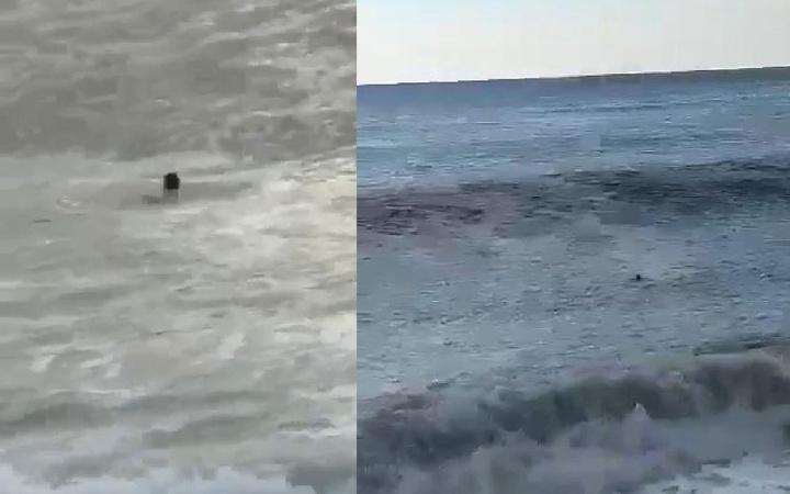 Denizde kayboldu, son anları kamerada