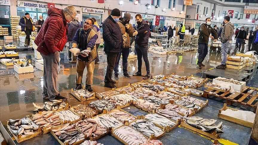 Sezonu bereketli geçiren Egeli balıkçılar koronavirüs döneminde cirolarını katladı